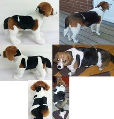 A stuffed animal made to look just like your dog!  They're called Cuddle Clones! This is Oreo and her Cuddle Clone :)