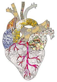 Coração …