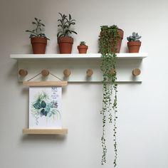 Картинки по запросу office plants finland