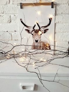 I left some twigs on the desk, in case my goat photo gets hungry. Decorating with goats. lol