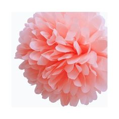 "Dress My Cupcake 14"" Coral Peach Tissue Paper Pom Poms, Set Of 4 -... ❤ liked on Polyvore"