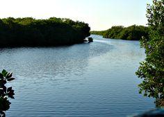 Reserva de la Biosfera Los Petenes.