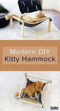 Diy cat hammock - Your Cat is Going to Lurve This Modern DIY Kitty Hammock – Diy cat hammock Diy Cat Hammock, Diy Cat Bed, Diy Dog, Cat Room, Cozy Place, Cat Furniture, Furniture Design, Modern Furniture, Futuristic Furniture