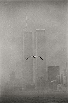 Lower Manhattan - Twin Towers, New York City' by Louis Stettner, 1979.
