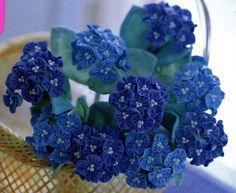Flores Yo-Yo (5) (576x472, 287KB)