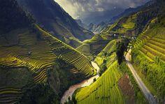 Mu Cang Chai, Vietnam: le incredibili terrazzeMisteri e misfatti   Misteri e misfatti