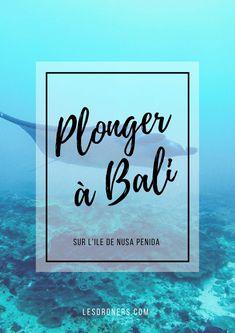 On a passé notre PADI dans le meilleur centre de plongée de Bali !