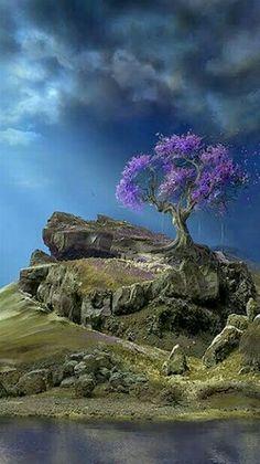 Nature - Bonsai tree survives solitude.