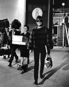 Audrey on set with her dog and a mink sweater #glamour #actress #beauty #hollywood #icon #style #fashion #1950s #allure #elegant #sexappeal #film