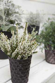 Planter Pots, Vase, Home Decor, Fall, Plants, Decoration Home, Room Decor, Jars, Vases