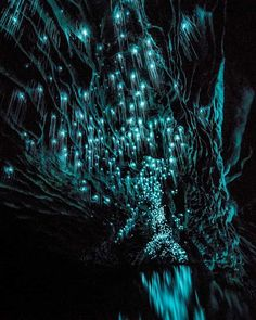 Waitomo glow worm caves, New Zealand. Poetry Inspiration, Travel Inspiration, Wanderlust Magazine, Glow Worm Cave, Dark Cave, Pitch Dark, New Zealand North, Sky Full Of Stars, Natural Phenomena