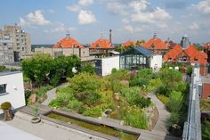 Berlin's roofs are covered in gardens. This is to help with rainwater absorption and air quality, as well as to open the roof to human use.