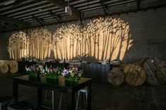 Wall-Length Gobo Adds Dramatic Dimension to Event Space. Photo: Mary Kate McKenna Photography