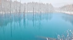 The Blue Pond in Snow,Hokkaido by Kent Shiraishi on 500px