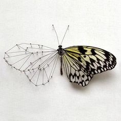 Beautiful, would totally get this tattooed on me :)