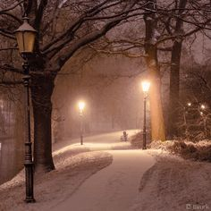 Winters night  Beautiful.  check out http://www.tradingprofits4u.com/