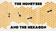 Why do honeybees love hexagons? Interesting video clips on many topics to share with kids/students.