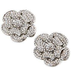 ElegantPark Rhinestones Rose Flower Wedding Party silver Shoe Clips Elegantpark http://www.amazon.com/dp/B015MGEQX8/ref=cm_sw_r_pi_dp_tMTqwb0CEMCGW