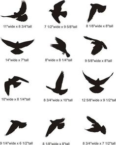 tattoo | Flying Dove Silhouette Pictures: Bird Tattoos Birds ...