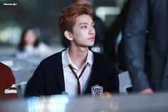 Joshua | Seventeen