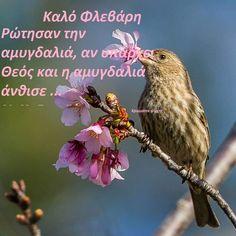 Mina, New Month, Greek Quotes, Spirituality, Animals, February, Decor, Animales, Decoration