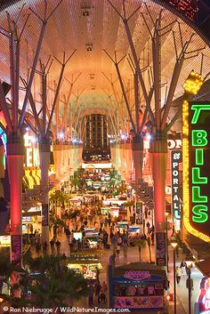 Fremont Street in downtown Las Vegas.... don't forget to zipline!! Fremont Street Photos