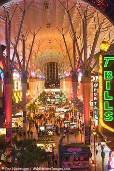 Fremont Street in downtown Las Vegas.... don't forget to zipline!! Fremont Street Photos