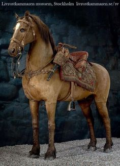 The oldest preserved horse: This is Streiff, the beloved battle horse of Gustav II of Sweden when the King was killed at Lutzen in 1632. Streiff survived the day but died of his injuries a few weeks later as he accompanied his King's body home. Streiff was memorialized for the mourning Queen, and he still wears the saddle he bore on that fateful day in 1632. He is on display at the Livrustkammaren museum, Stockholm.