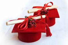 La laurea è una cerimonia di grande importanza, non solamente per il laureando che, con il raggiungimento del fatidico 'pezzo di carta', chiude la propria carriera scolastica, ma, soprattutto per i genitori che, dopo tanti sacrifici, vedono il risultato tanto sperato.