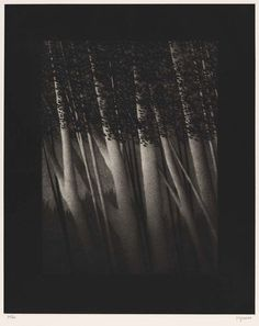 Garden shadows. Robert Kipniss, mezzotint on paper