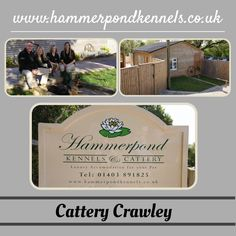 For more details you can visit at:  http://www.hammerpondkennels.co.uk/