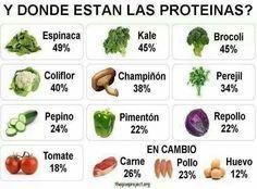 Proteínas                                                                                                                                                                                 Más