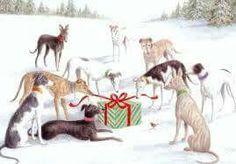 Greyhounds Christmas