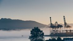 Harbour Fog - Low fog across Vancouver Harbour this morning. Only had a brief moment to grab a shot.