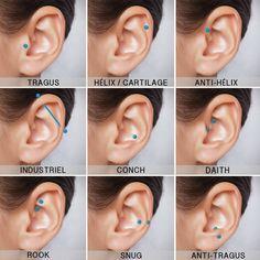 Piercing oreja industrial y tragus 55 super Ideas Innenohr Piercing, Ear Piercing Names, Guys Ear Piercings, Ear Piercings Chart, Female Piercings, Pretty Ear Piercings, Piercing Chart, Ear Peircings, Types Of Ear Piercings