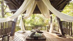 Imagine relaxing amid the trees in one of two intimate tree house Pavilions at the Dorado Beach resort in Puerto Rico...