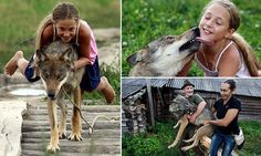 How a Russian family took in and tamed a pack of wolves