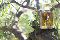 acidity in premium bottle Whiskey Bottle, Drinks, Outdoor Decor, Flasks, Drinking, Beverages, Drink, Beverage