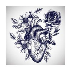 anatomical heart tattoos for women beautiful & anatomical heart tattoos for women beautiful Tattoos For Women Meaningful, Tattoos For Women Half Sleeve, Shoulder Tattoos For Women, Upper Shoulder Tattoo, Chest Tattoo Female Upper, Back Tattoo Women Upper, Side Thigh Tattoos Women, Side Hip Tattoos, Girl Thigh Tattoos