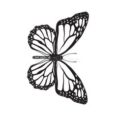 Top view of beautiful monarch butterfly, isolated sketch style illustration. Top , butterfly sketch Top View Of Beautiful Monarch Butterfly, Isolated Sketch Style Illustration Stock Vector - Illustration of majestic, drawing: 84241619 Monarch Butterfly Tattoo, Butterfly Sketch, Butterfly Tattoo Meaning, Butterfly Tattoos For Women, Butterfly Tattoo Designs, Butterfly Thigh Tattoo, Small Dragonfly Tattoo, Butterfly Outline, Butterfly Painting