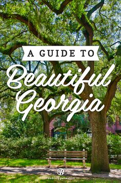 Home to some of the most awe inspiring landscapes, the Peach State is a natural Southern paradise.