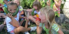 Creating Healthy and Sustainable Systems in Schools - School Gardens as a Foundation | CSGN
