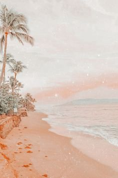 peachy aesthetic beach sunset sand shore sea ocean palm trees california vsco edits