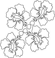 hawaiian hibiscus flower outline drawing