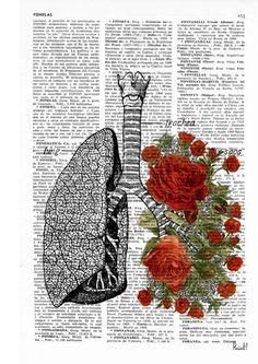 Venta de pulmones de primavera con rosas rojas humano grabado