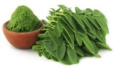 Moringa, a planta que purifica a água e poderia acabar com a fome mundial                                                                                                                                                                                 Mais
