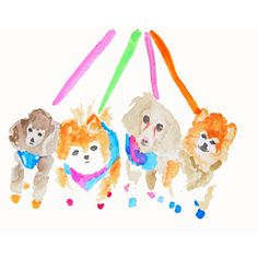 Beckerman Pups #huntersalley