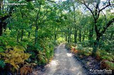 Valle del Jerte - Valle Cereza: Normas para salir al campo: guía del ecoturista