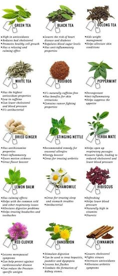 15 tea for a healthier body and mind
