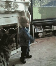 The surprise attack. | 33 Animal GIFs That Are Guaranteed To Make You Laugh